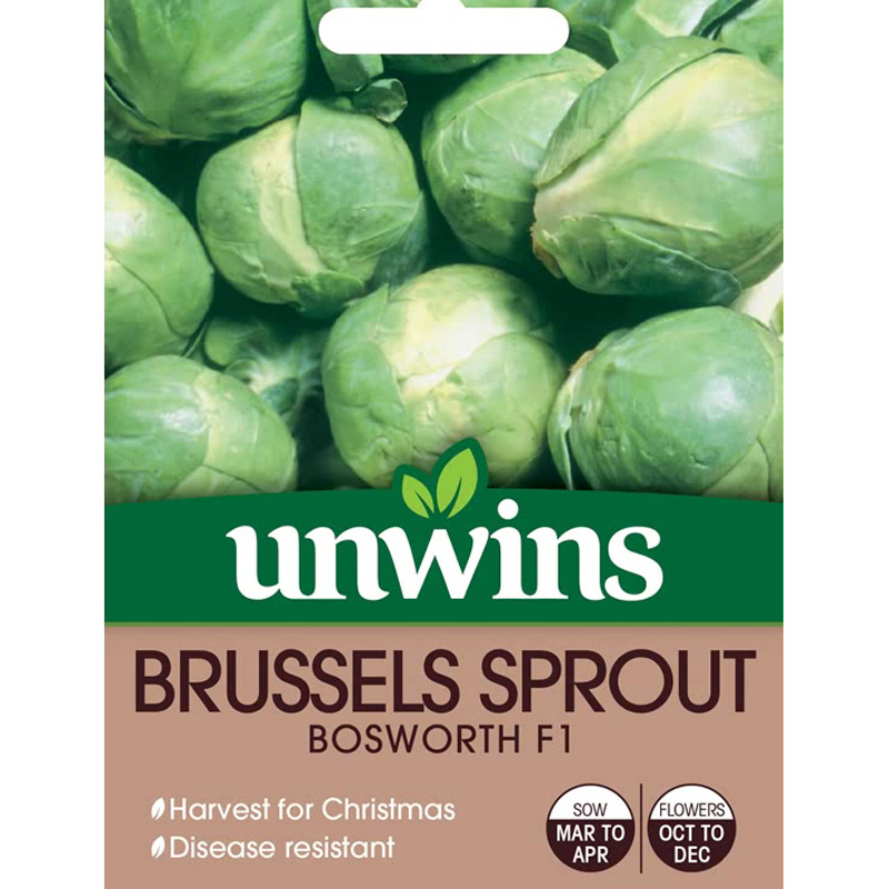Picture of Unwins BRUSSELS SPROUT Bosworth F1 Seeds