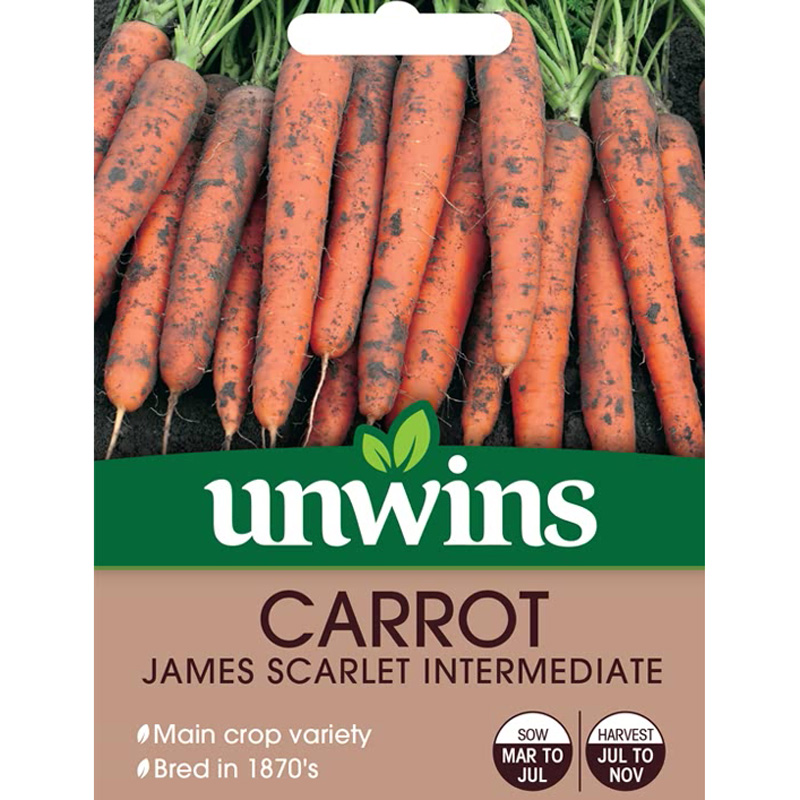 Picture of Unwins CARROT James Scarlet Intermediate Seeds