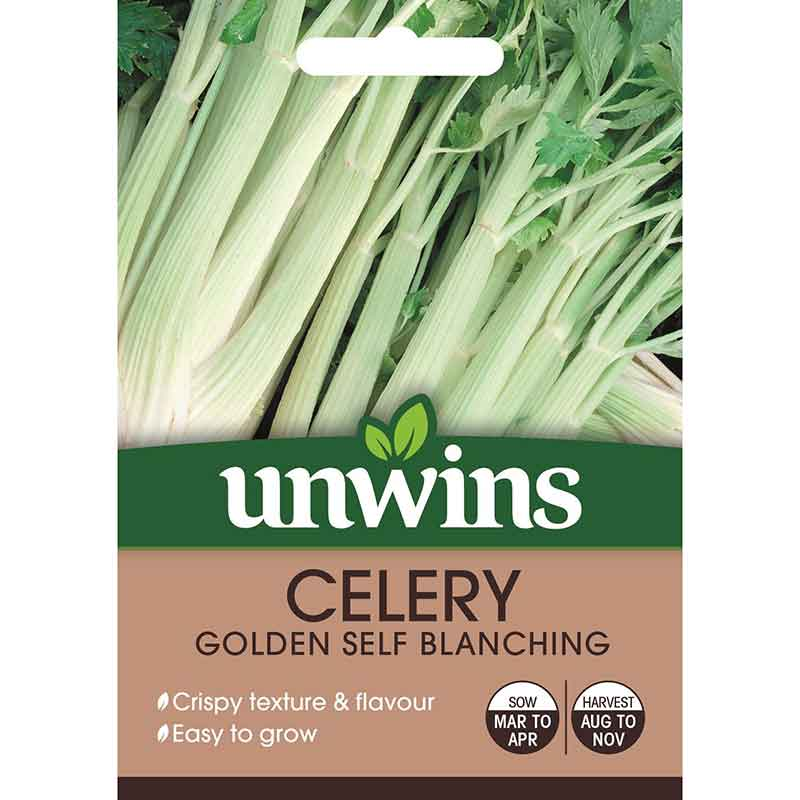 Picture of Unwins 'Golden self blanching' celery seeds