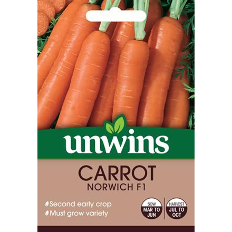 Picture of Unwins 'Norwich F1' Carrot seeds