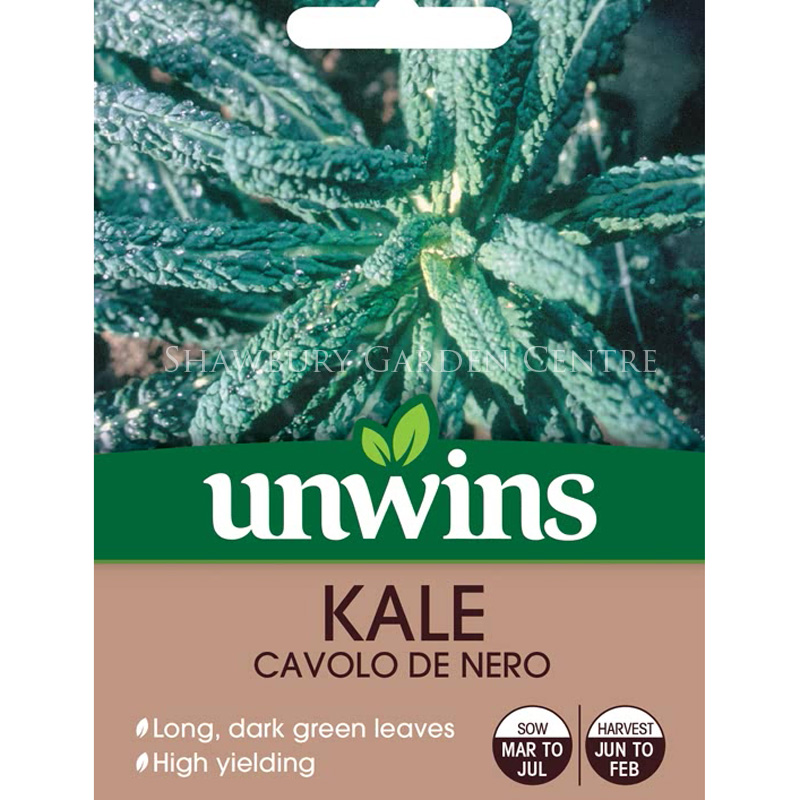 Picture of Unwins KALE Cavolo De Nero Seeds