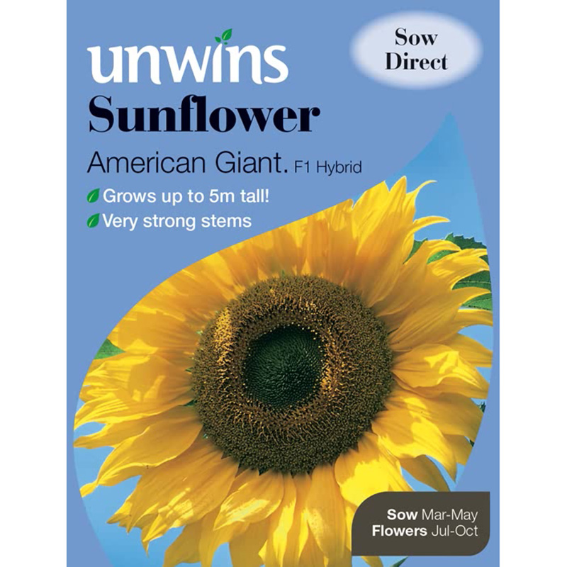 Picture of Unwins SUNFLOWER 'American Giant F1' Seeds