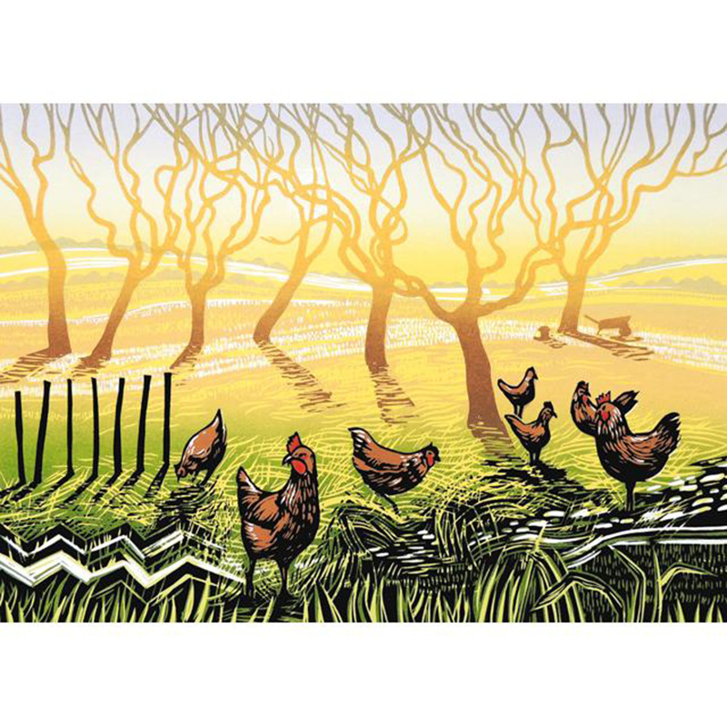 Picture of Green Pebble 'Sunrise Chickens' by Rob Barnes