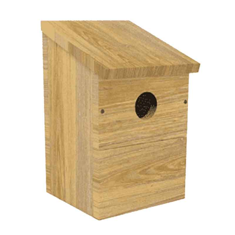 Picture of Peckish Everyday Nest Box