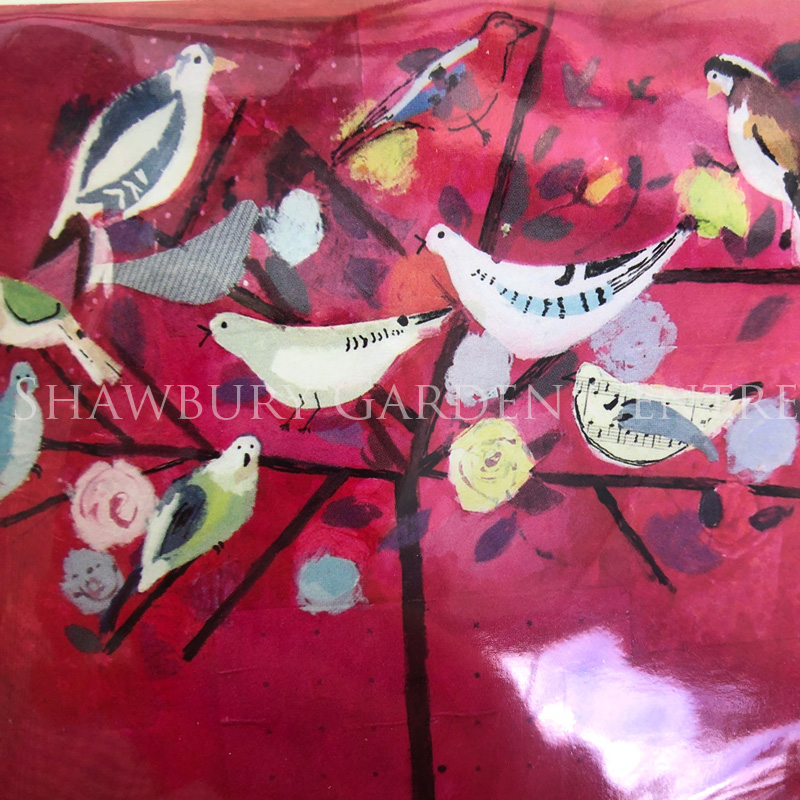 Picture of Woodmansterne Pack of 5 Notelets 'birds of a feather'