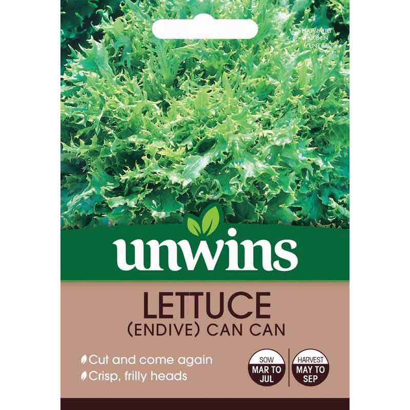 Picture of Unwins 'Can Can' Endive Lettuce Seeds
