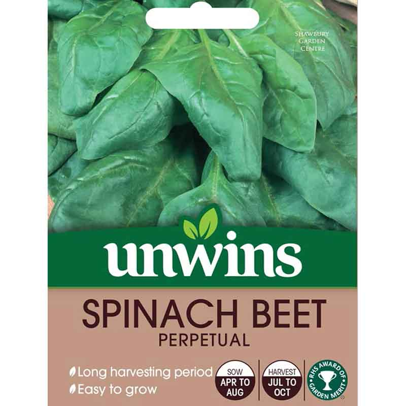 Picture of Unwins 'Perpetual' Beet Spinach