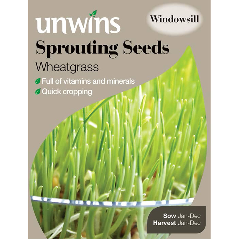 Picture of Unwins Wheatgrass Sprouting Seeds