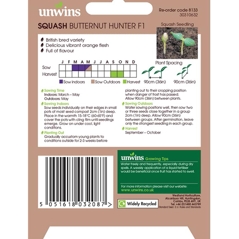 Picture of Unwins 'Butternut Hunter' Squash Seeds