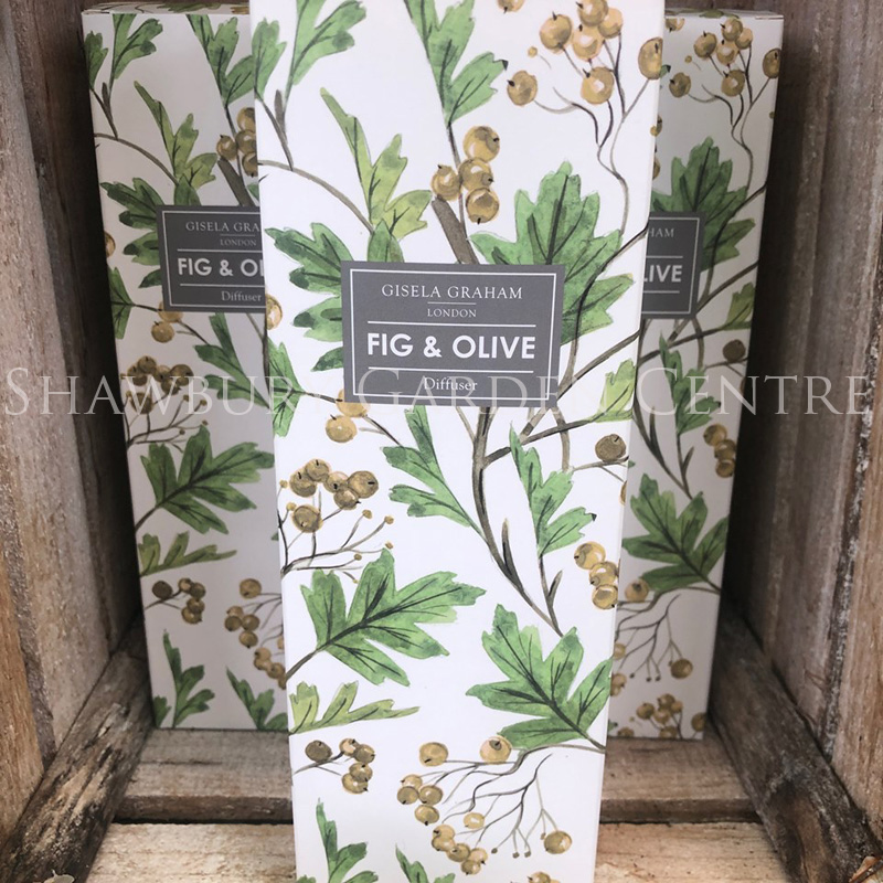 Picture of Gisela Graham Fig & Olive Diffuser