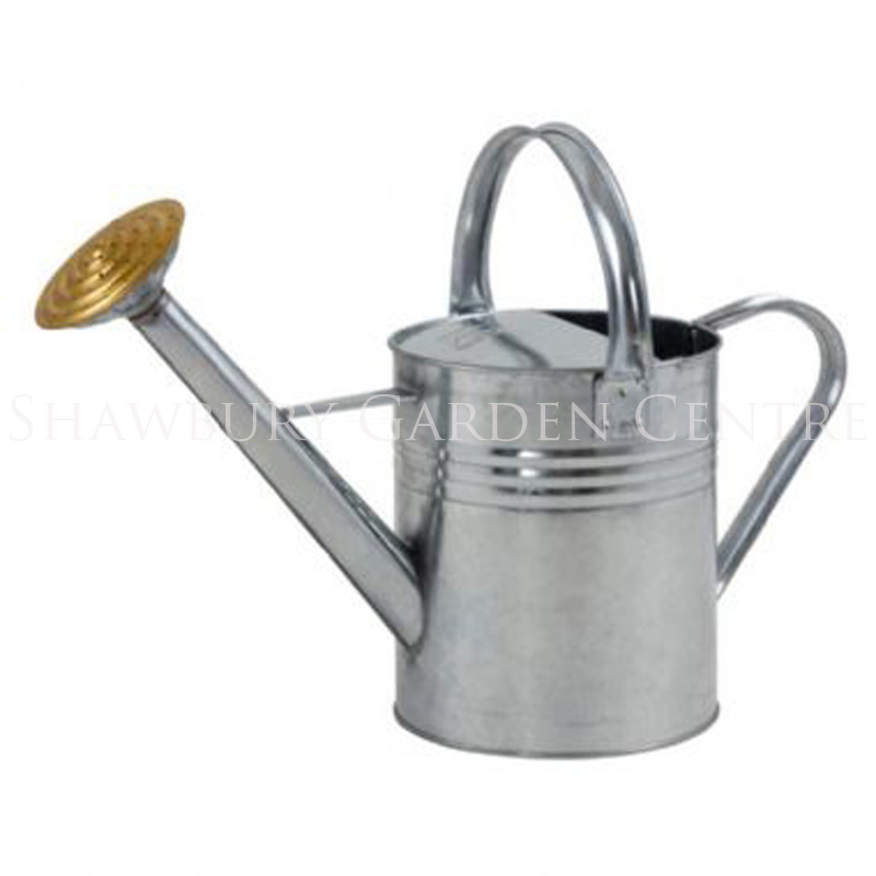 Picture of Ambassador Galvanised Watering Can