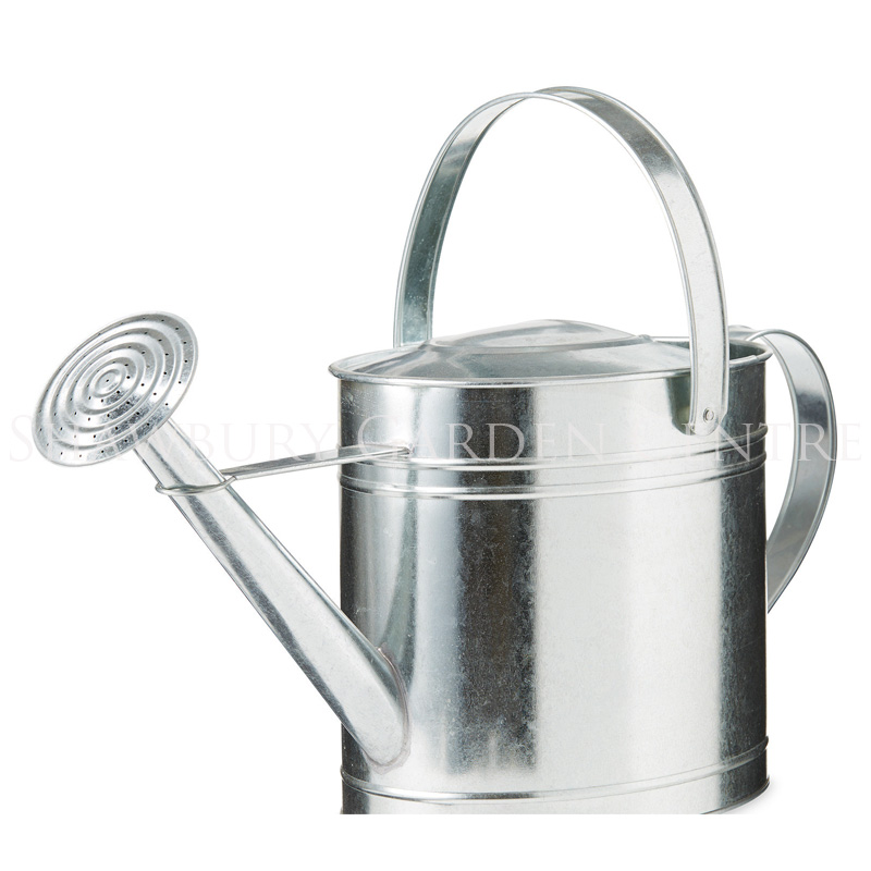 Picture of Ambassador Oval Galvanised Watering Can