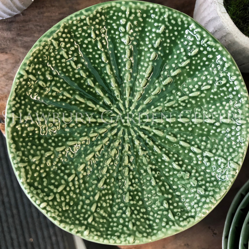 Picture of Gisela Graham Green Ceramic Cactus Trinket Dish