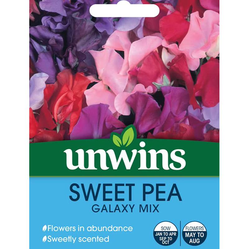 Picture of Unwins Sweet Pea 'Galaxy Mix' Seeds