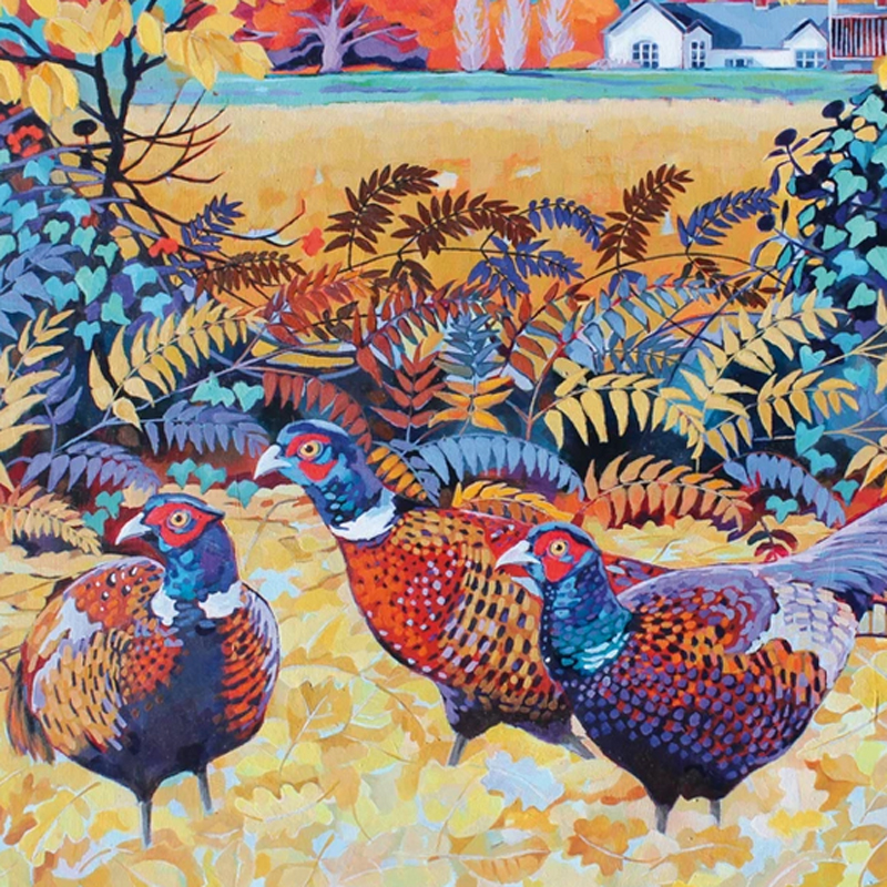 Picture of 'Stunning Pheasants' by Jenny Hancock - blank inside card