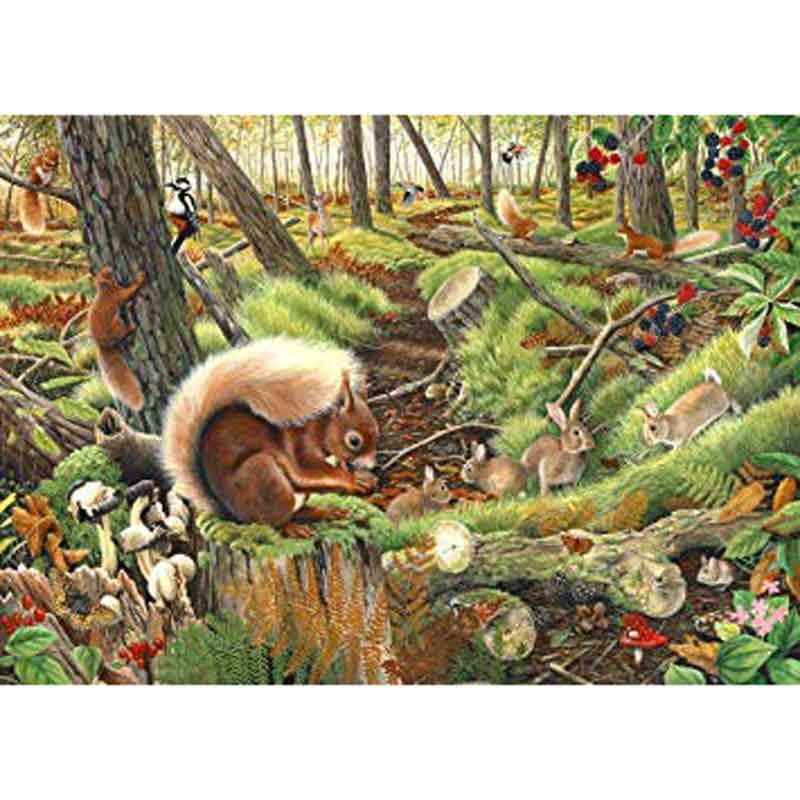 Picture of House of Puzzles 'Save Our Squirrels' Jigsaw