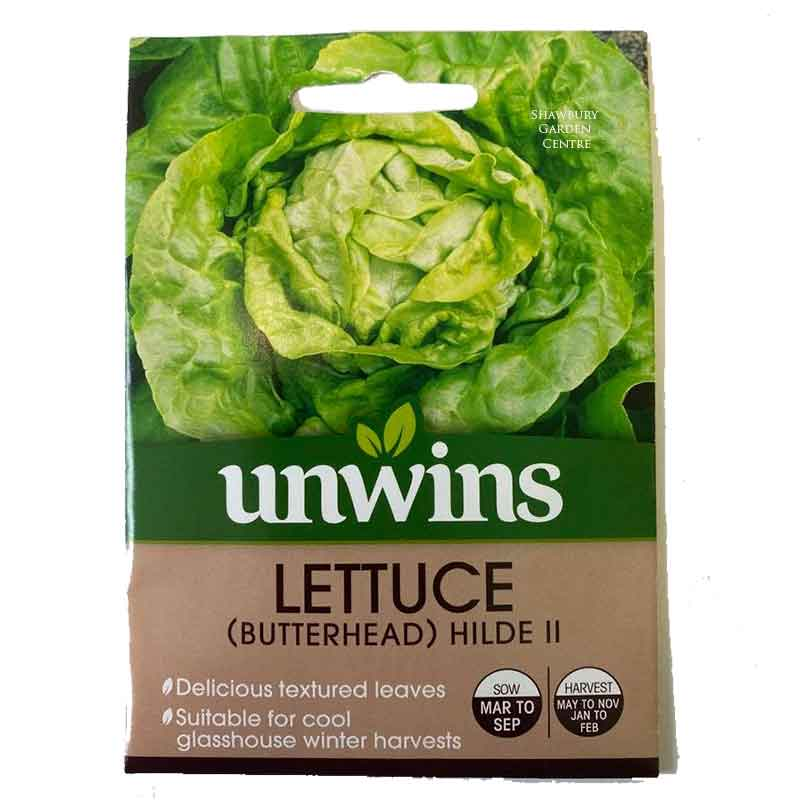 Picture of Unwins Lettuce Hilde II - Seeds