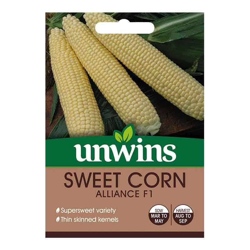 Picture of Unwins 'Alliance' Sweet Corn Seeds