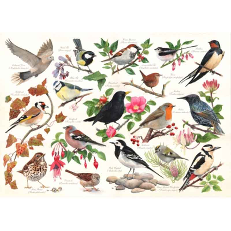 Picture of House of Puzzles 'Birds in My Garden' Jigsaw