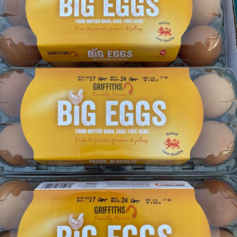 Picture of Eggs