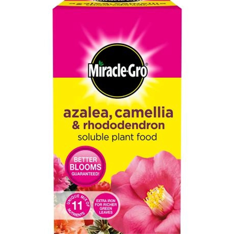 Picture of Miracle-Gro Azalea, Camellia & Rhododendron Soluble plant food