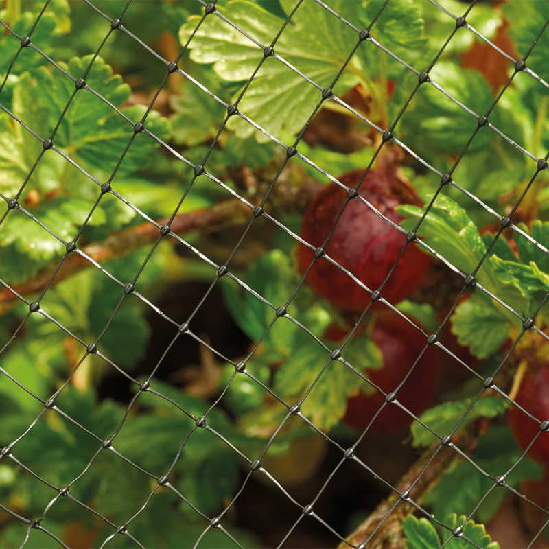 Picture of Protective Fruit and Pond Netting