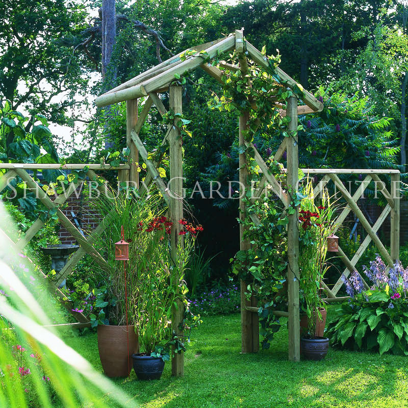 Picture of Forest Garden Rose Arch