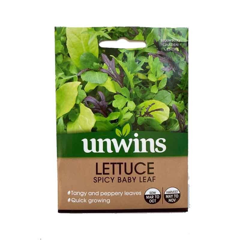Picture of Unwins LETTUCE Spicy Baby Leaf Seeds