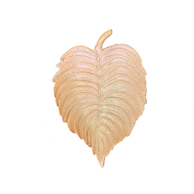 Picture of Parlane Leaf Trinket Dish