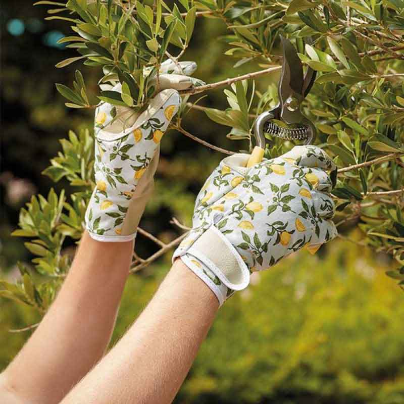 Picture of Briers Professional Gardening GLOVES Sicilian Lemon