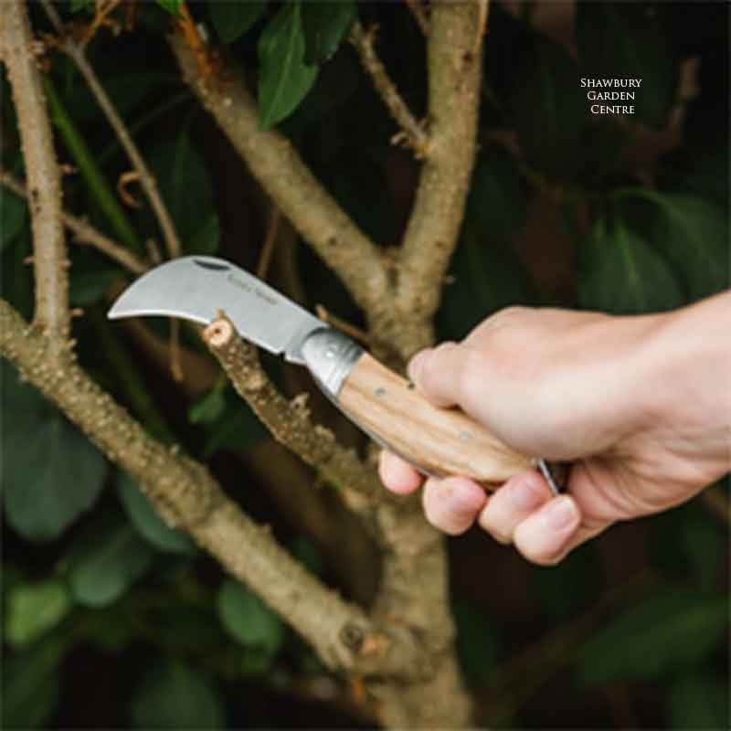 Picture of Kent & Stowe Expert PRUNING KNIFE