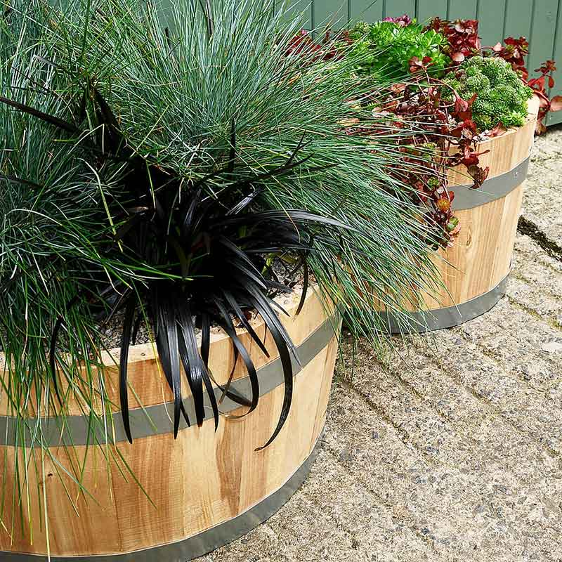 Picture of Arran Birch Hardwood Planter