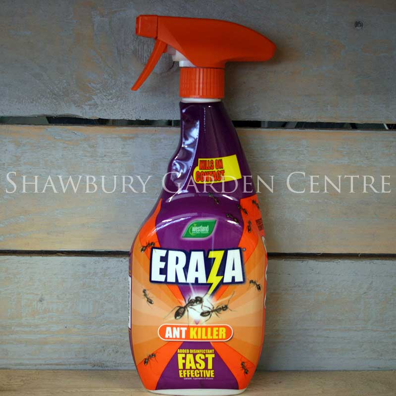 Picture of Westland Eraza Ant Killer Liquid Ready to Use Spray