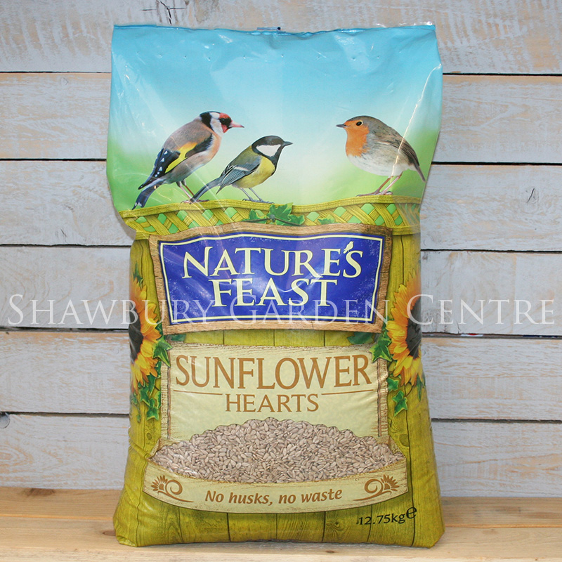 Picture of Nature's Feast Sunflower Hearts