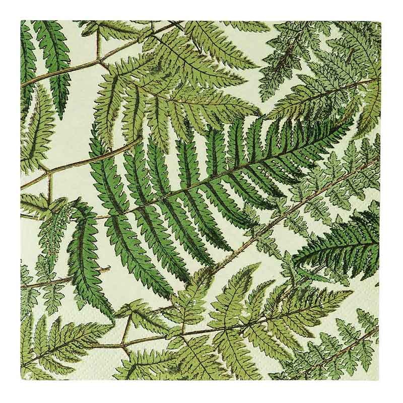 Picture of Talking Tables Botanical Fern Paper Napkins