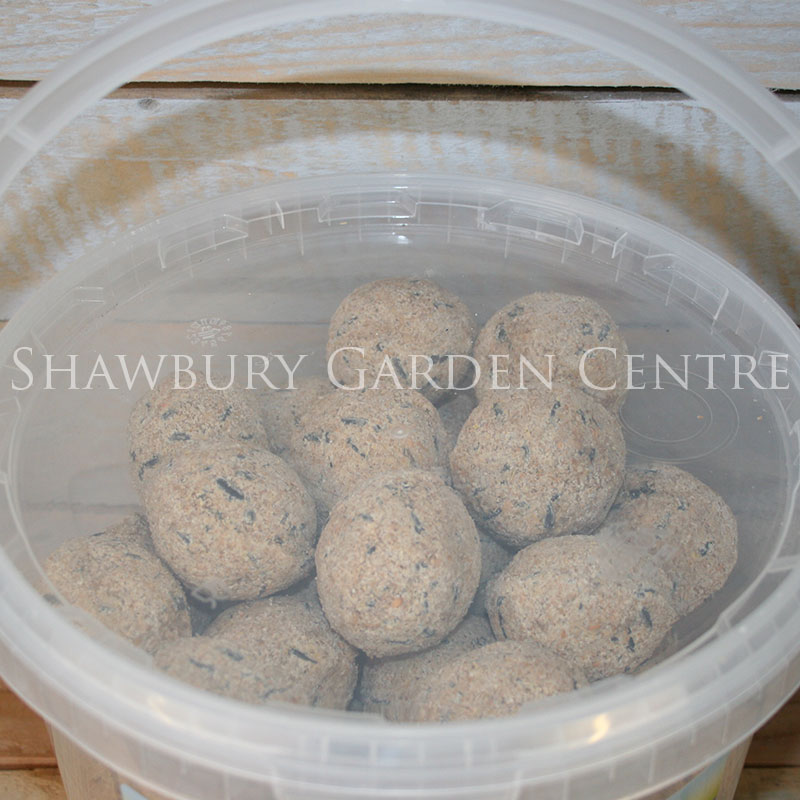 Picture of Nature's Feast Energy Fat Balls in Bucket Tub