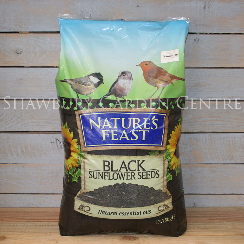Picture of Nature's Feast Black Sunflower Seeds