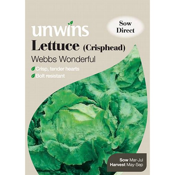 Picture of Unwins 'Webbs Wonderful' Crisphead Lettuce Seeds