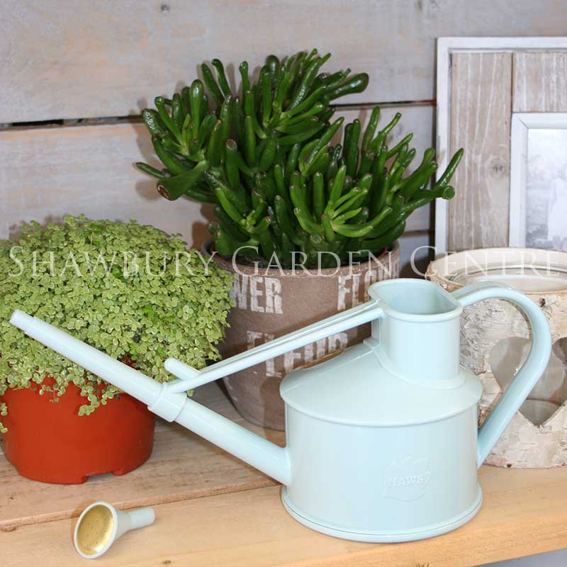 Picture of Haws Handy Indoor Watering Can - Duck Egg