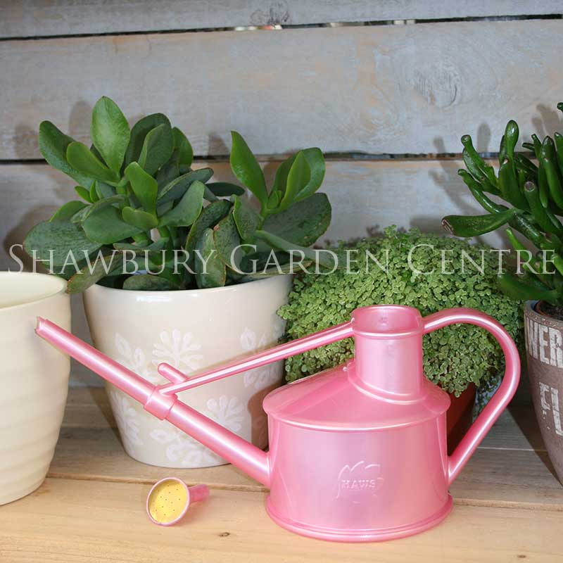 Picture of Haws Handy Indoor Watering Can - Pink