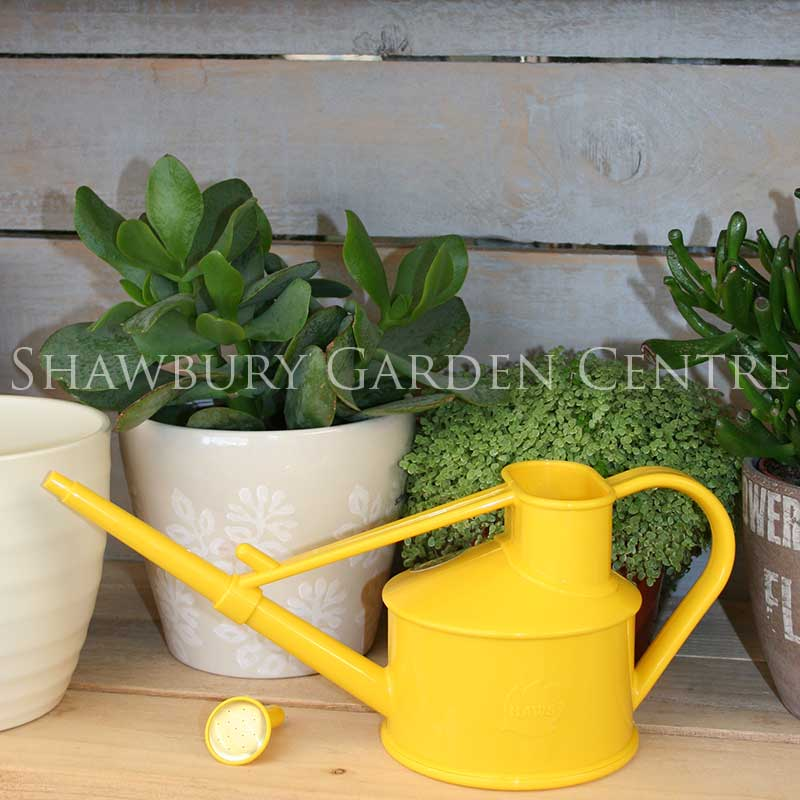 Picture of Haws Handy Indoor Watering Can