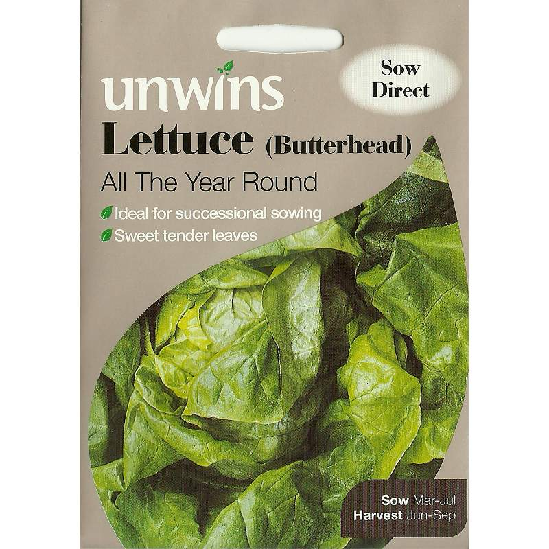 Picture of Unwins 'Butterhead' Lettuce Seeds