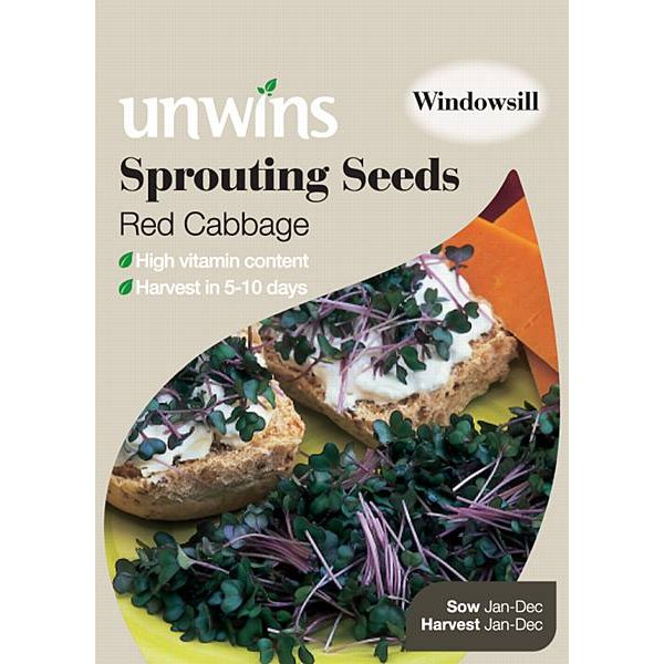 Picture of Unwins Red Cabbage Sprouting Seeds