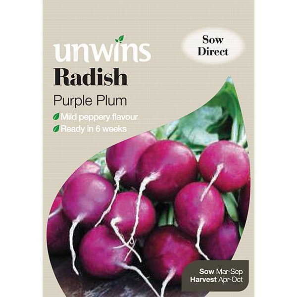 Picture of Unwins 'Purple Plum' Radish Seeds