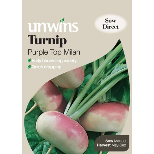 Picture of Unwins 'Purple Top Milan' Turnip Seeds