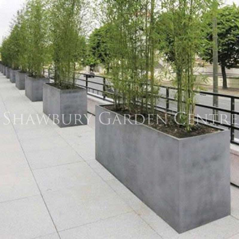 Barrier planters for Tall planters for privacy