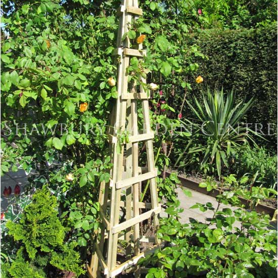 Picture Of Grange Trellis Obelisk