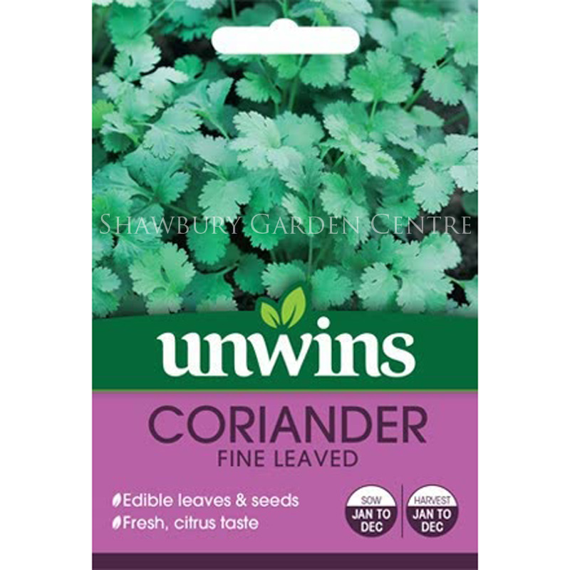 Picture of Unwins 'Fine Leaved' Coriander Seeds