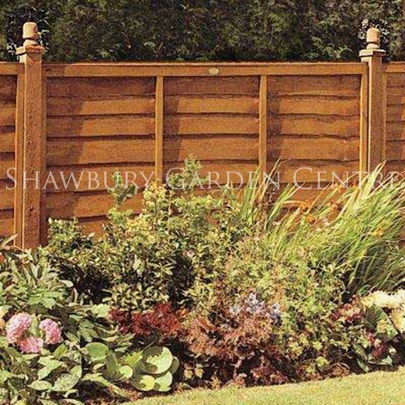 Picture of Grange Lap Fence Panel