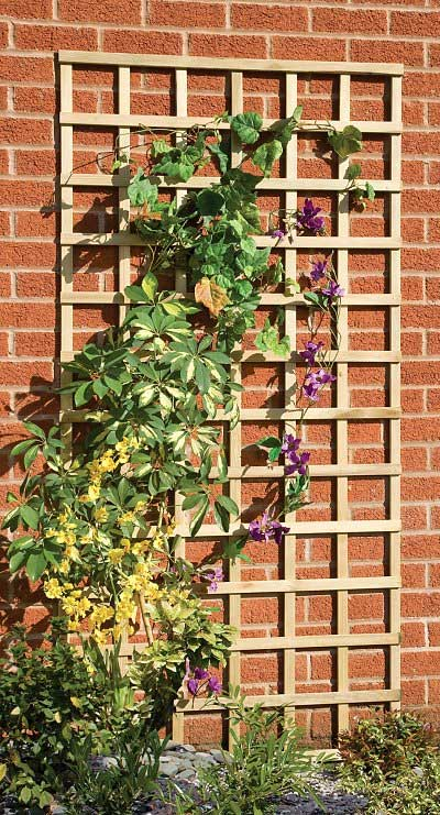 Picture of Grange Elite Square Wall Trellis